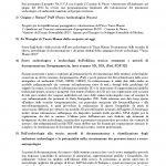 2013 12 14 convegno pag3
